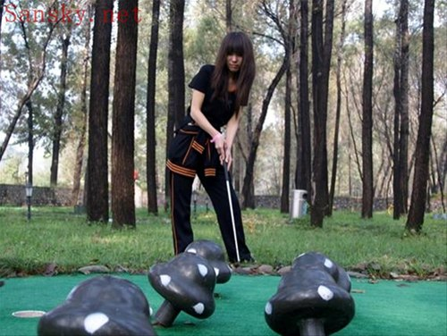 高尔夫、沙壶球